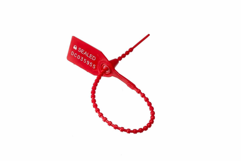DSC-300 Red (3)